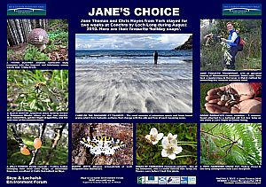 Jane's Choice - You, too, can have a SLEF poster (see below image)